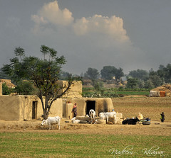 A Village of Punjab, photo by Nadeem Khawar.