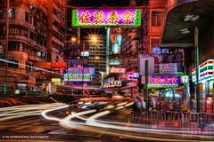 Neon Jungle photo by TIA International Photography