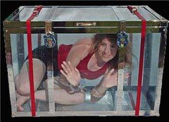 Dayle Krall in a water filled trunk photo by Dayle Krall:Most Accomplished Female Escape Artist