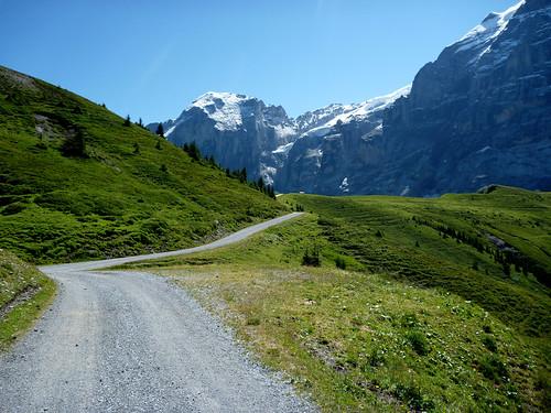 Above Gross Scheidegg