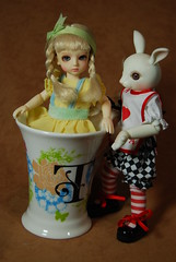 Alice in the tea cup photo by bluelight444