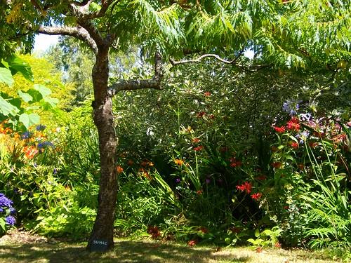 Vu jardin 14