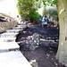 Garden Done VIII