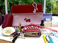 Radley handbag photo by Deirdre Snook