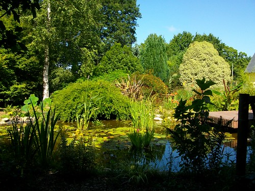 Vu jardin 5