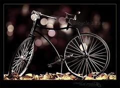Bicycle since - 1886 photo by Halah Al-yousef ||||