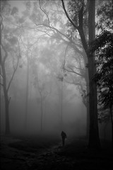 Stranger in the woods, Nandi Hills photo by Raj Hanchanahal Photography