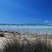 Formentera - Estany Pudent, Formentera