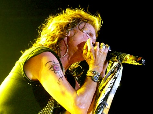 steven tyler tatoo