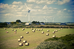Hay Bales & Wind Mills photo by Zak Milofsky