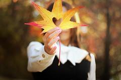 Fall In Love photo by 寺崎絵理奈