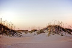 Dunes of OBX