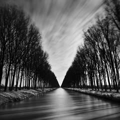 Damme Canal Shadows photo by Gavin Dunbar