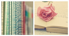 about books and the pleasure of reading :) photo by sma_kee