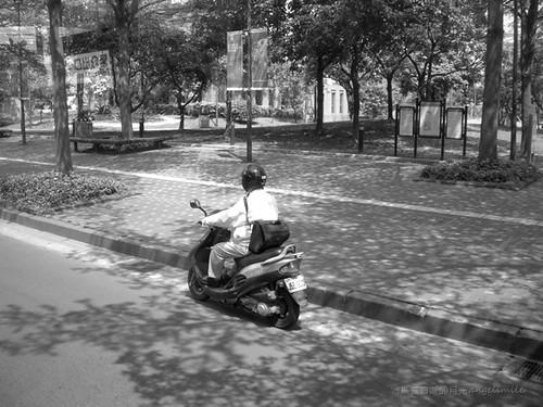 Street snapshot - Umbrage