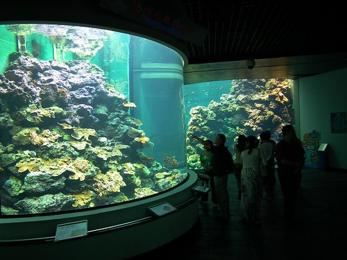 The View From Taiwan National Museum Of Marine Biology