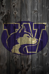 Washington Huskies Wood iPhone 4 Background photo by anonymous6237