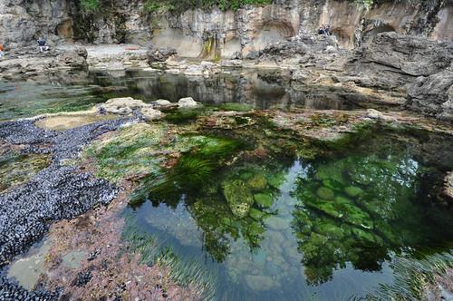 Juan de Fuca Trail, Botanical Beach, pool