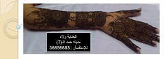 حنـة العـرووس 1 photo by » الحناية ولاء «