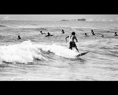 Cores - preto&branco photo by Francine de Mattos