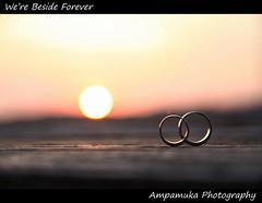 We're Beside Forever (Couple White Gold Rings At SunSet) / เราจะอยู่เคียงข้างกันตลอดไป (แหวนคู่ทองคำขาวยามพระอาทิตย์ตก) photo by AmpamukA