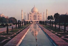Agra photo by Monica Forss