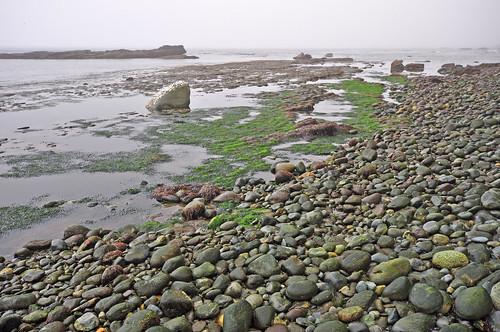 Juan de Fuca Trail , Chin beach