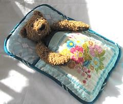 A sleeping bag for Bear photo by flossieteacakes