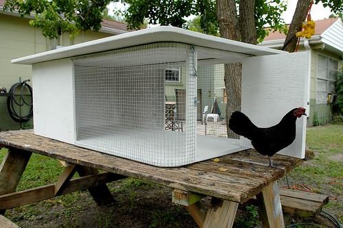 Two Hen Coop