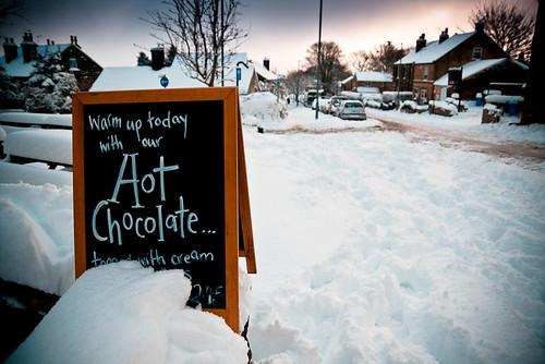 Snow Nov 2010-3.jpg