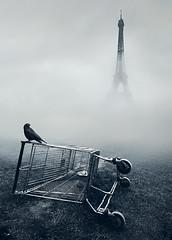 Paris.. photo by Mikko Lagerstedt