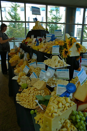 Everywhere cheese!