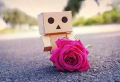 Dambo !n LOVE  :♥´° photo by RíchÝ