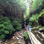 The Flume Gorge is beautiful, rain or shine!