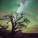Grand Canyon Toroweap Tuweep Milky Way Astro Photography Elliot McGucken Fine Art Landscape Nature Photography