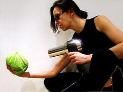 zero zero cabbage - licence to cook photo by emanuela franchini