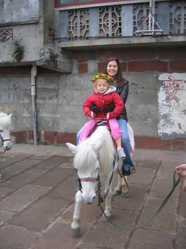 gemma_kim_horse_1