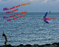 Blue girl kite beach copy