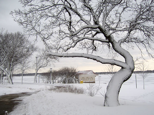 Snow Day 1738