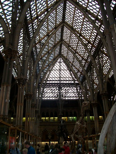 Inside Pitt-Rivers