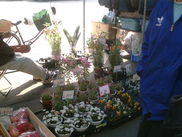 market day060331c