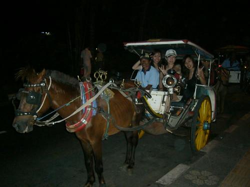 可憐馬車 唉 (1)