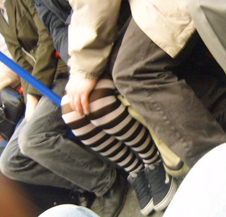 Zebra Legs