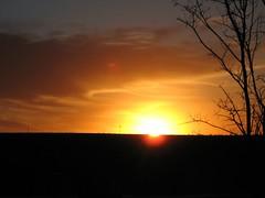 Texas Sunset Landscape