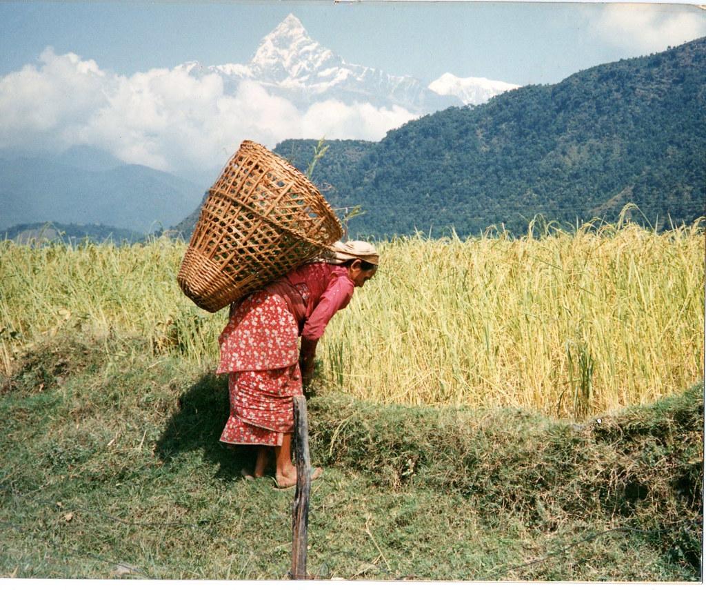 peasant nepal