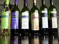 Wine's of Penamonte