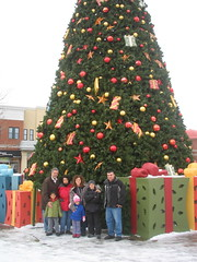 Easton's huge tree!