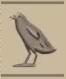 古埃及文字中W、O和U都是这个鸟