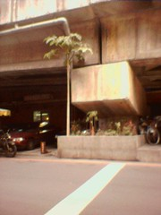 51218_33-1247-台北橋下南側美珠滷肉飯