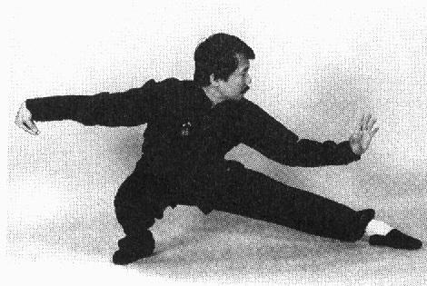taichi master
